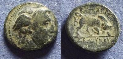AE15 de Seleuco I Nikator 3657571.m